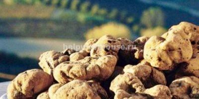 Доходный бизнес/инвестиции в агротуризм - Moncalvo (IT) | Объект: 038